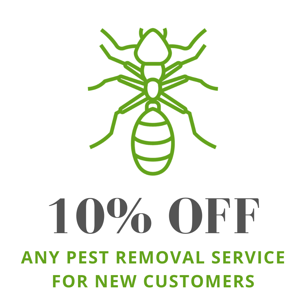 outdoor preventative pest treatment services for Milwaukee, Waukesha, Shorewood, West Allis, Wauwatosa, Milwaukee, & beyond
