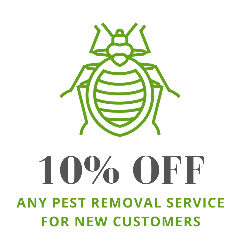 Discounts on seasonal pest control packages in Waukesha, Milwaukee, Shorewood, Mequon, West Allis, and beyond