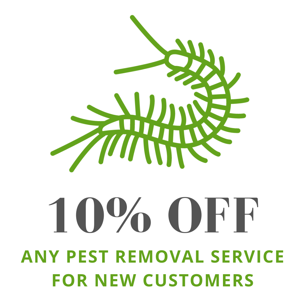 10% off any pest removal service for new customers