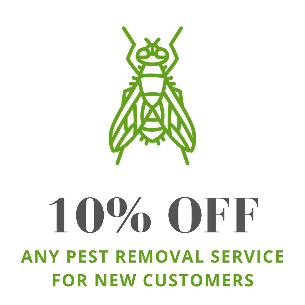 Fly Extermination Milwaukee | Horse Fly Pest Control | Fruit